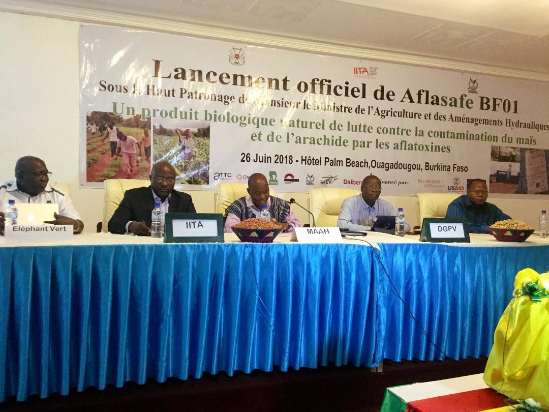 Lancement de Aflasafe BF01 à Ouagadougou, au Burkina Faso