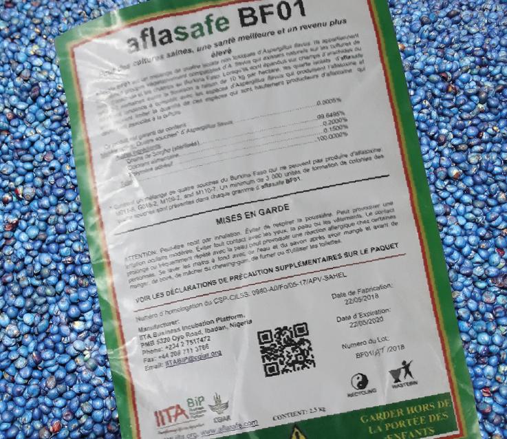 Faire attention à cette étiquette! L'Aflasafe entièrement naturel est principalement composé de sorgho en poids (plus de 99%), enrobé de souches non toxinogènes collectés au Burkina Faso qui déplacent les souches productrices de la toxine.